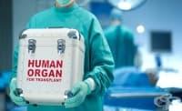 Протеин е отговорен за отхвърлянето на трансплантирани органи
