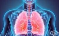 Тази седмица започват безплатните прегледи за туберкулоза в цялата страна