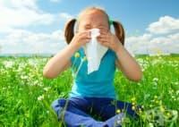 През пролетта ни дебнат кърлежи и алергии