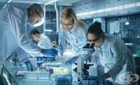 Ракът на бъбреците може би тръгва от мутирала ДНК още в детска възраст