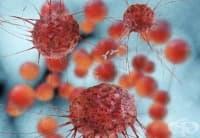 Повече от 2/3 от случаите на рак се дължат на грешки в копирането на ДНК