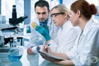 Разработват метод за диагностициране на рак само с капка кръв