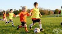 Спортният министър се похвали с пробива си в образователната система