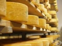 Влезе в сила закона, забраняващ едновременното производство на млечни и имитиращи продукти