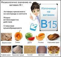 Физиологично значение на витамин В15