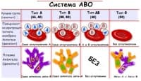 Система AB0