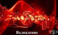 Имунно възпаление