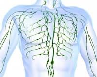 Лимфни възли