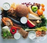 Как изглеждат 200 калории в различните храни