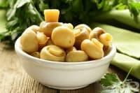 Как да съхраняваме печурките - част 2