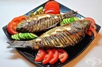 Подходящи подправки за морска риба в зависимост от начина й на приготвяне