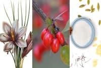 Зарешк, шафран и бадемово мляко - вкусове, познати от 1662 година до днес