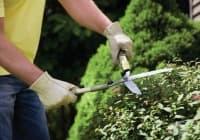 12 оригинални идеи, за които мечтае всеки градинар