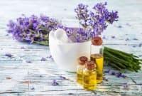 Срещу стрии се масажирайте с масло от лайка и лавандулово масло