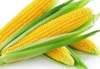 Подобрете зрението си с царевица