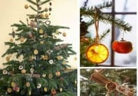 Направете си екологична коледна украса от сушени плодове