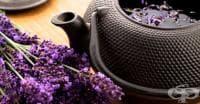 Срещу пресипнал глас пийте чай от лавандула