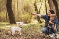 Кои 6 кучета се разбират страхотно с децата