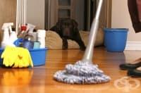 Използвайте чифт стари чорапи, за да почистите перфектно жилището си