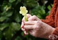 Използвайте 3 практични метода за лечение на остеоартрит