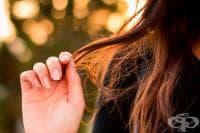 Как да боядисаме косата си с природни средства?