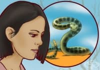 Как да разпознаем дали една змия е отровна?