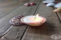 Как да си направим декоративни свещи от мидени черупки?