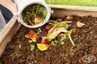Как да приготвите домашен компост за растенията
