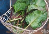 Подобрете храносмилането с листа от червено цвекло
