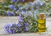 Намалете главоболието с етерично масло от розмарин