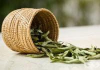 Насърчете растежа на косата с кисело мляко и листа от къри