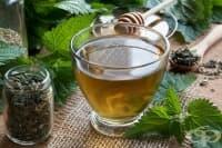 Пречистете организма от токсини с 5 ефикасни билки