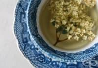 Облекчете грипа и настинката с чай от бъз, роза и мента
