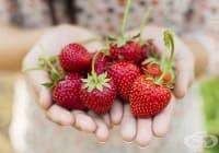 Предотвратете появата на разширени вени с напитка от ягоди и грозде