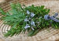 Предотвратете преждевременното побеляване на косите с розмарин и градински чай
