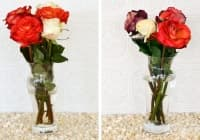 Използвайте стотинка, за да запазите цветята свежи за по-дълго време