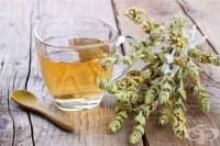 Пийте мурсалски чай при стомашни проблеми и грип