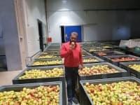 Дариха десет тона ябълки за социалните заведения в Пловдив