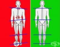 Балансирайте тялото си с тези упражнения за гърба