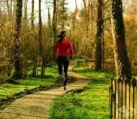 5 форми на кардио тренировка за бързо горене на мазнините