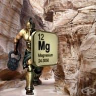 Силата на магнезия