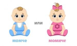 Калкулатор на пола на бебето