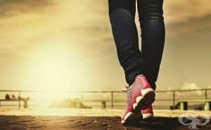 Бързото ходене е предпоставка за дълъг живот