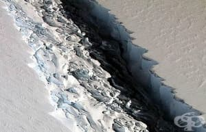 Шелфовият ледник Ларсен С напълно ще се отцепи до броени дни