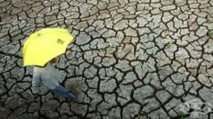 Температурните аномалии на планетата ще продължат до 2022 г.