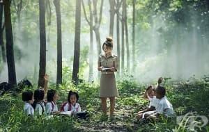 Проучване разкрива ползите за здравето на децата от обучението сред природата