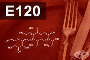 E120 - Кохинил, Карминова киселина (Cochineal, Carminic acid, Carmines)