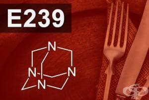 E239 - Хексаметилен тетрамин (Hexamethylene tetramine)