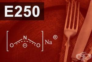 E250 - Натриев нитрит (Sodium nitrite)