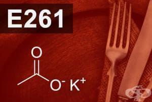 E261 - Калиев ацетат (Potassium acetate)